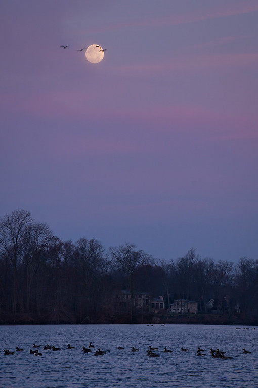 2012 11-29 Phalanx Reservoir Moon-122