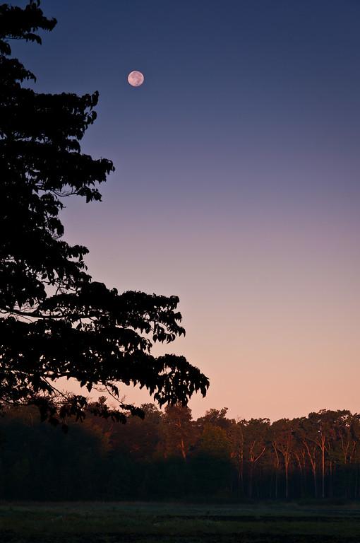 2012 10-1 HockHockson Moon-64