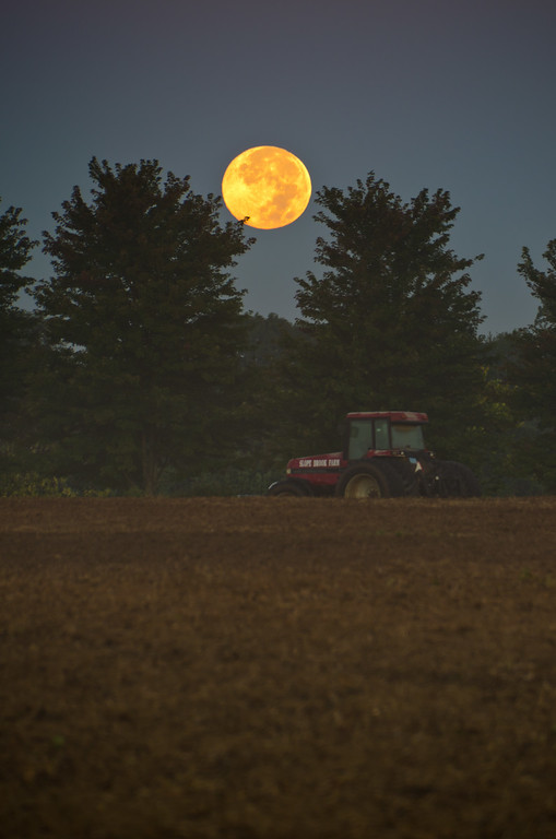 2013 9-19 Doorbrook Setting Harvest Moon Vertical-79