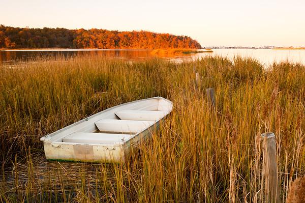 2011 11-5 Navesink River Hide & Sink